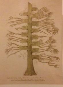 arbre scherer